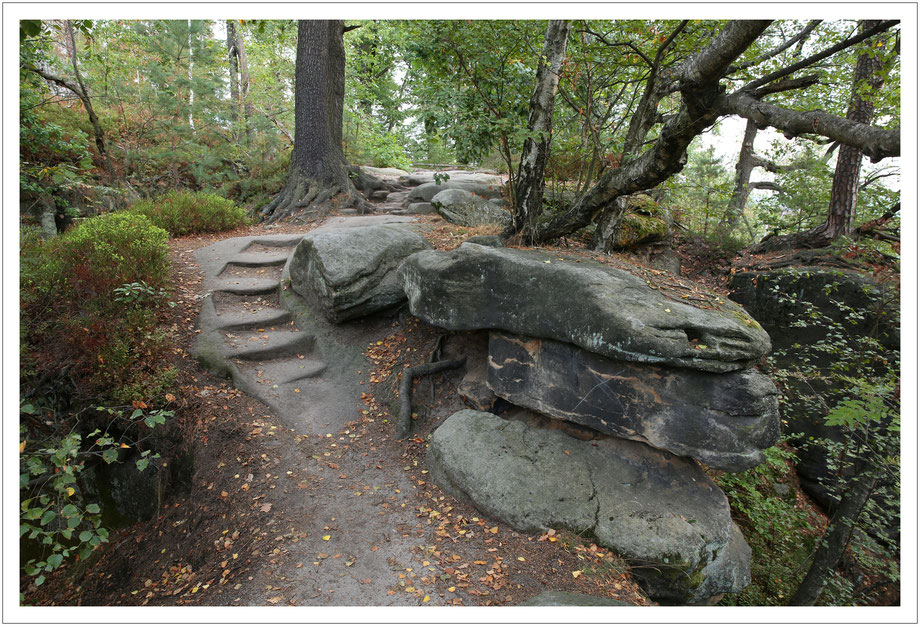nette Wege auf dem Pfaffenstein