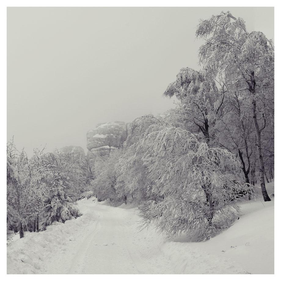 Aufstieg im Winternebel