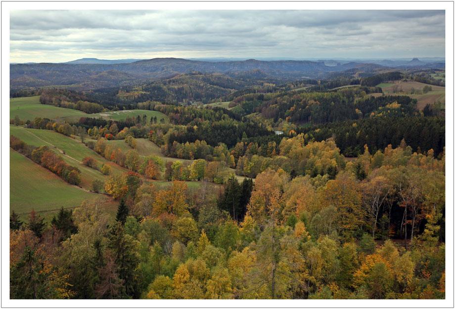 Weifbergblick auf viel Wald zwischen Hohem Schneeberg (links) und Lilienstein (rechts)