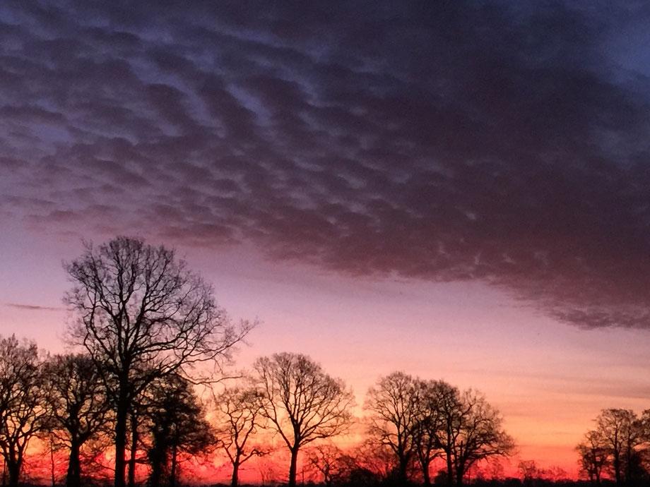 Sonnenaufgang in Ostfriesland im Januar 2017