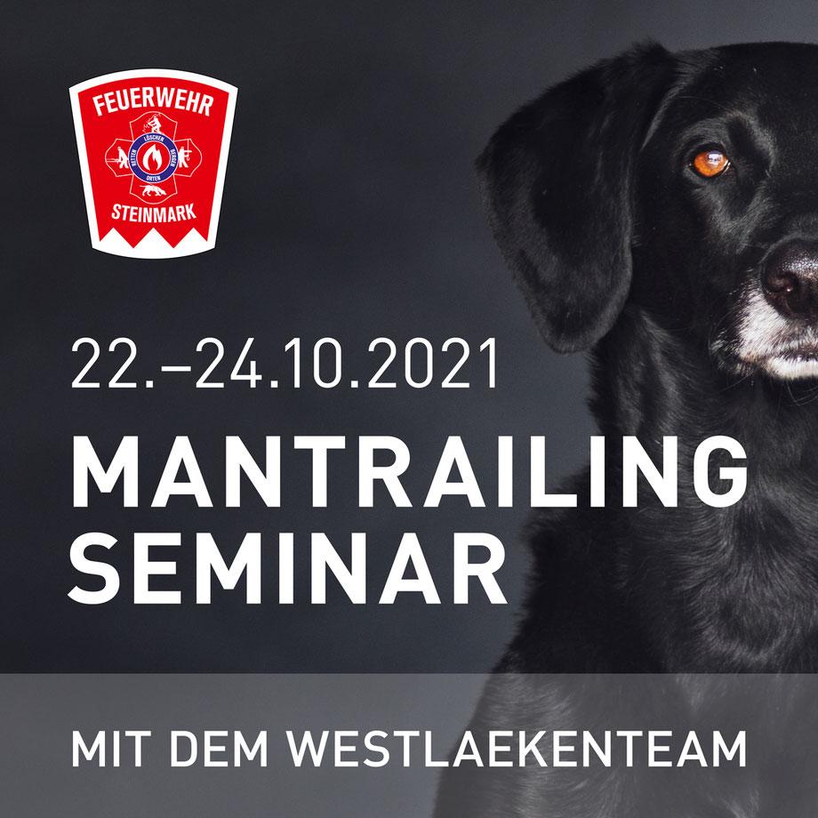 Mantrailing, Seminar, Feuerwehr, Steinmark, Einsteiger, Hund, Rettungshundestaffel