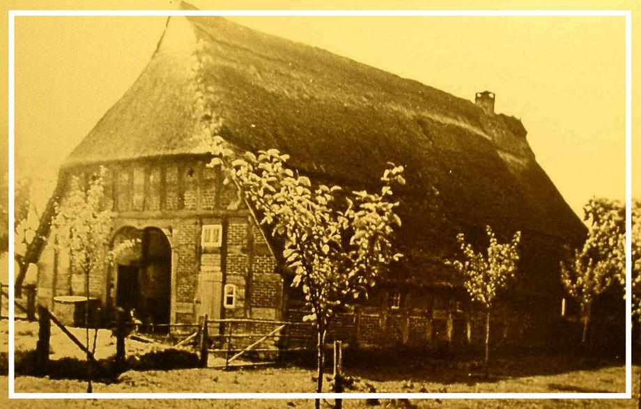 Dedendorf Nr. 6 Das Strohdachhaus, erbaut im Jahre 1774, war 111 Jahre im Besitz der Familie Tramann (später Thramann). Es wurde am 13.Mai 1981 durch Blitzschlag vernichtet.