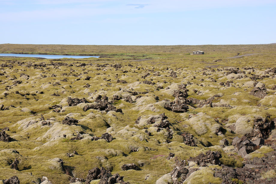Champ de lave dans la péninsule de Reykjanes en Islande