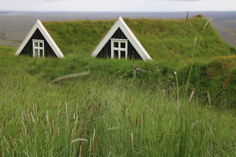 Bergerie de Sel dans le parc national de Skaftafell en Islande