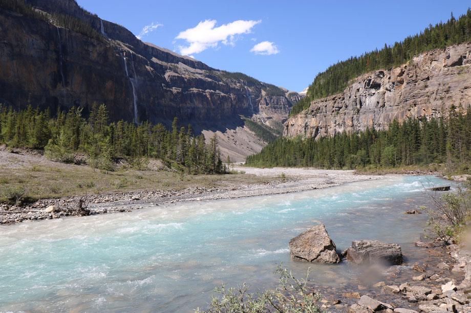 Valley of thousand Falls sur le Berg Lake Trail dans le Mount Robson Provincial Park (Colombie-Britannique - Canada)