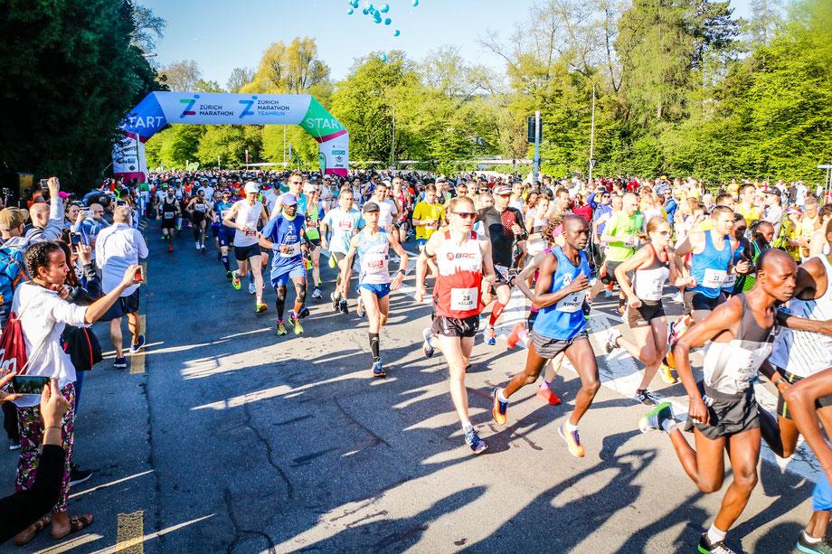 Start zum Zürich Marathon Punkt 8:30 Uhr. (Foto: David Keller)