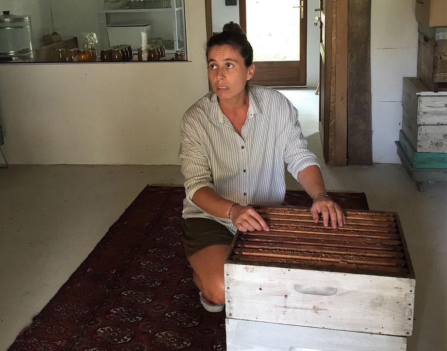Visite du rucher de Caillaou à Saint-Magne.