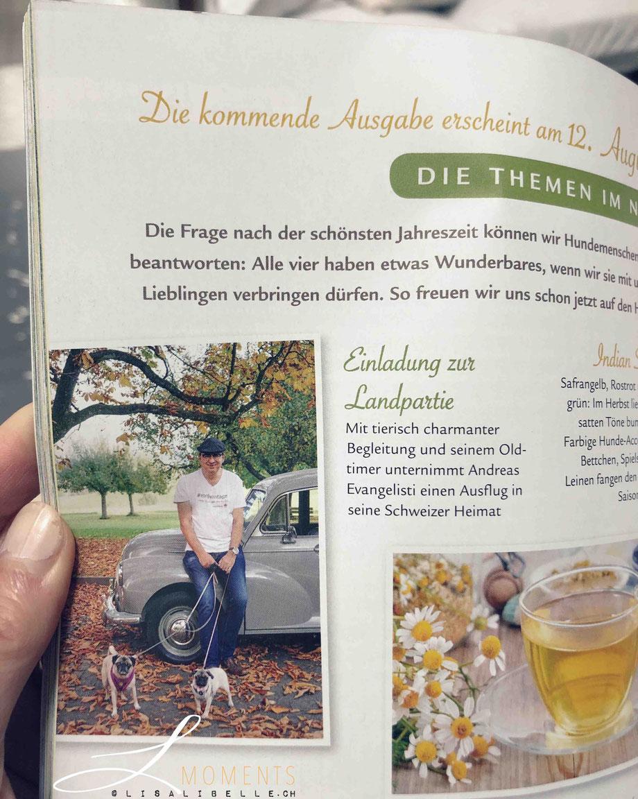 """(oben) Artikel im Magazin: """"Hund im Glück"""" Vorschau 3/2020 / Sonderheft der Deutschen Zeitschrift Wohnen & Garten"""