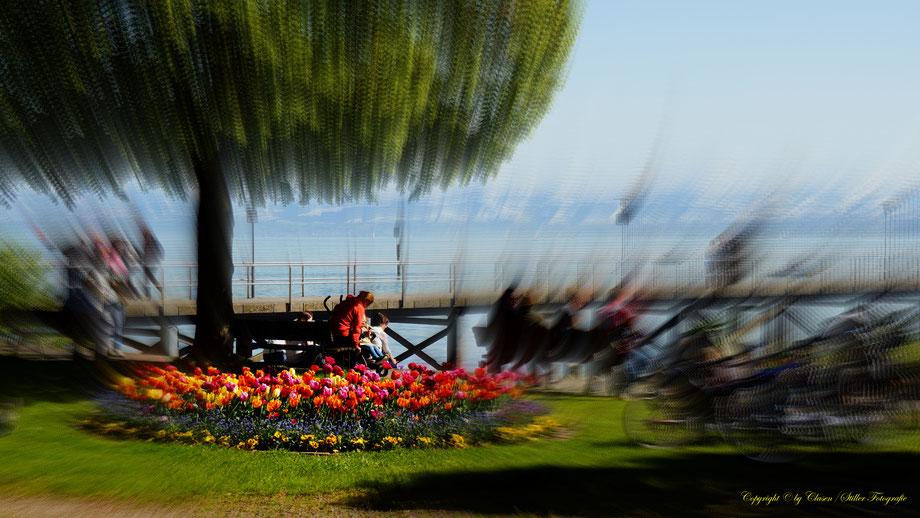 Tuning World Bodensee, Clasen/Stiller Fotografie, Udo Clasen, Patrick Stiller, Tuning, carlifting, Bodensee,