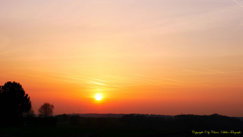 Sonnenaufgang, sonnenuntergang, Kornfeld, Baum, Sonnenstrahlen, Wolken, Bäume,