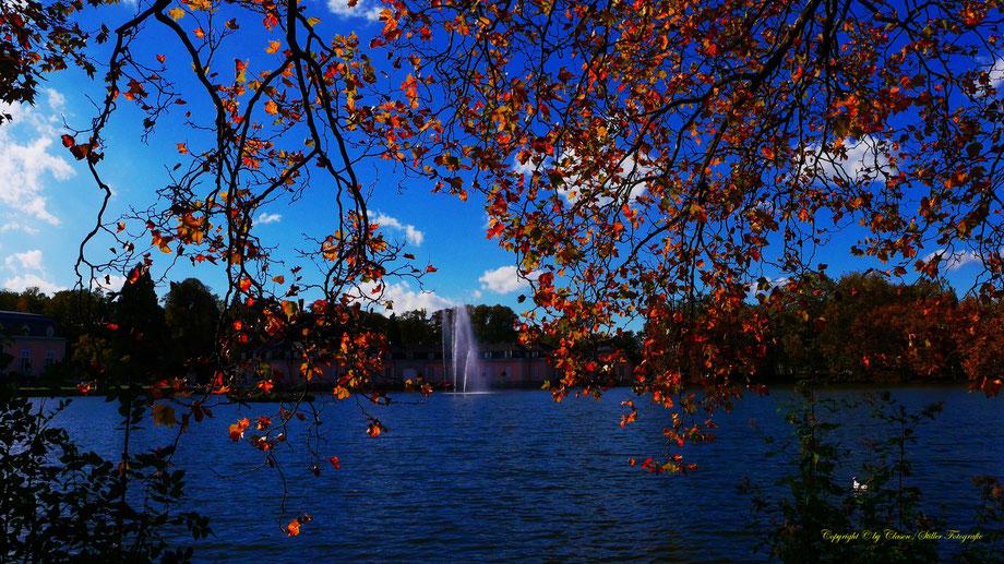 Sonnenaufgang, Kornfeld, Baum, Sonnenstrahlen, Wolken, Schloss Benrath, Herbst,