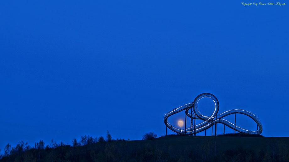 Hüttenwerke Duisburg, Clasen/Stiller Fotografie, Udo Clasen, Patrick Stiller, Nachtaufnahme, Langzeitbelichtung, Sonnenaufgang, Sonnenuntergang, grün, blau, orange, gold, gelb, Pflanzen, Baum, Bäume, HDR, Düsseldorf, Duisburg,