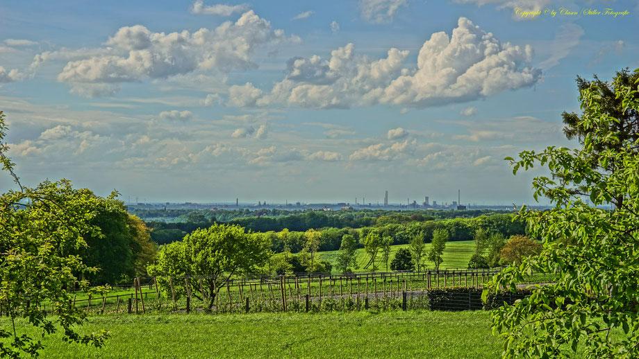 Landschaften, Clasen/Stiller Fotografie, grün, Wolkenformation, udo clasen, patrick stiller, frisches grün, frühling,