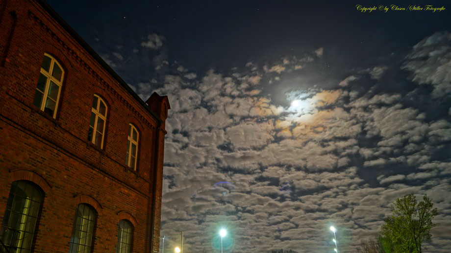 Nachtaufnahme, Langzeitbelichtung, Baum, Sonnenaufgang, Sterne, Mond,