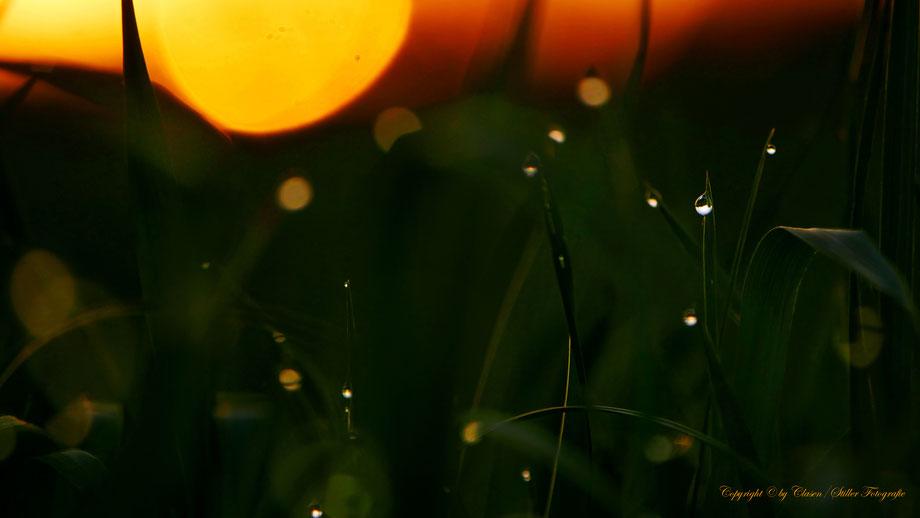 Clasen/Stiller Fotografie, Udo Clasen, Patrick Stiller, Nachtaufnahme, Abstrakte Fotos, Langzeitbelichtung, Sonnenaufgang, rot, grün, blau, orange, gold, HDR, Düsseldorf Fernsehturm, Duisburg, abstraktes, Kunst, Fotokunst, farbenspiel, Wolken, gelb,