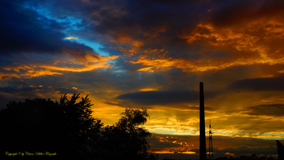 Santrans, Santrans Ratingen, Farbenprächtige Fotos, clasen/stiller fotografie, udo clasen, patrick stiller, Sonnenaufgang, sonnenuntergang, baum, bäume blau, lila,grau, gelb, rot, orange, gold, schwarz, schatten, rosa, braun,