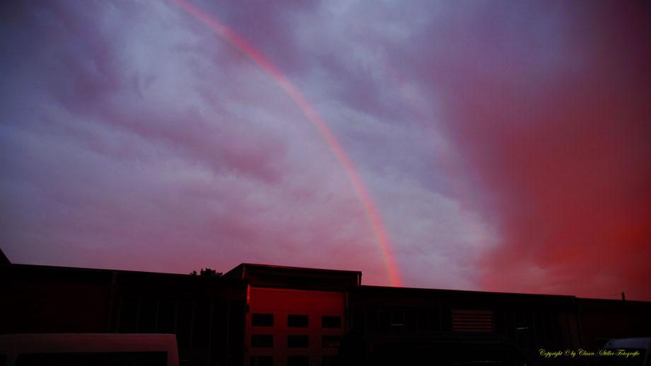 Regenbogen, Sonnenaufgang