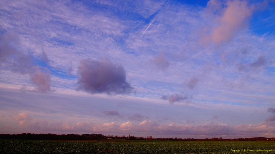 Landschaften, Wald, Wiesen, Felder, Wolken,Sonne,