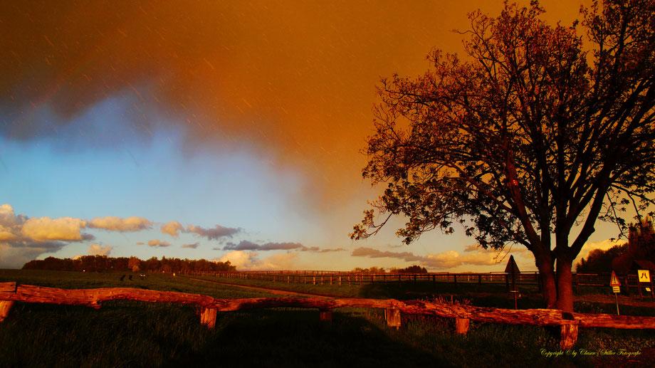 Sonnenaufgang, Kornfeld, Baum, Sonnenstrahlen, Wolken, Regenbogen,