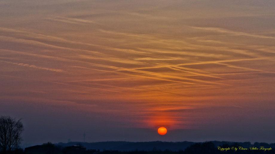Sonnenaufgang, Sonnenuntergang, Kornfeld, Baum, Sonnenstrahlen, Wolken,