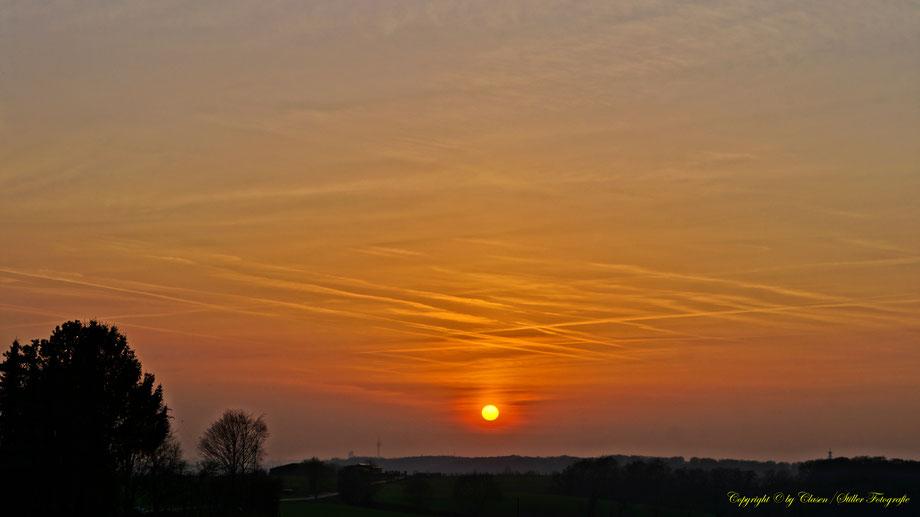 Sonnenaufgang, Kornfeld, Baum, Sonnenstrahlen, Wolken, Sonnenuntergang,