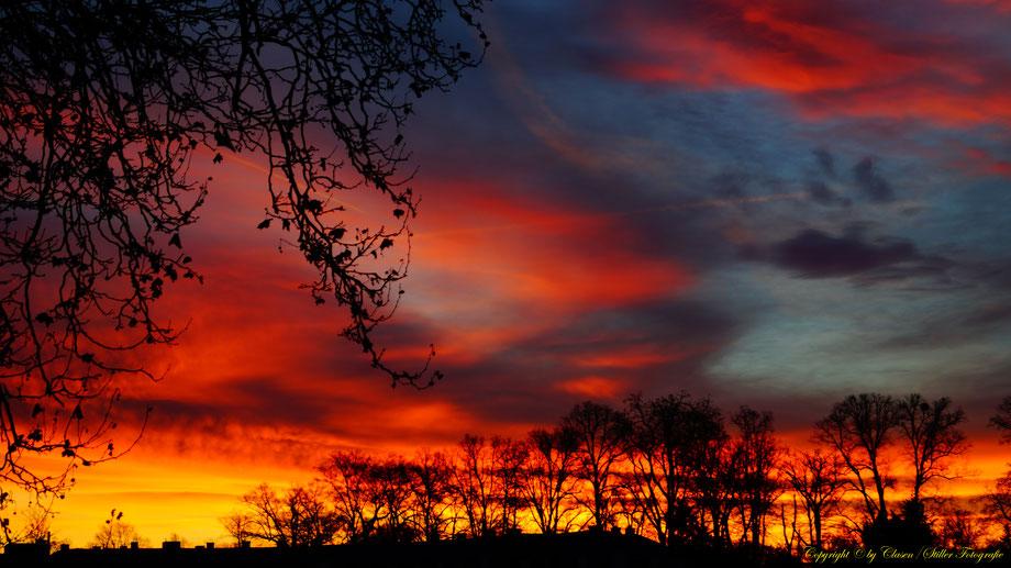 Farbenprächtige Fotos, clasen/stiller fotografie, udo clasen, patrick stiller, Sonnenaufgang, sonnenuntergang, baum, bäume blau, lila,grau, gelb, rot, orange, gold, schwarz, schatten, rosa, braun,