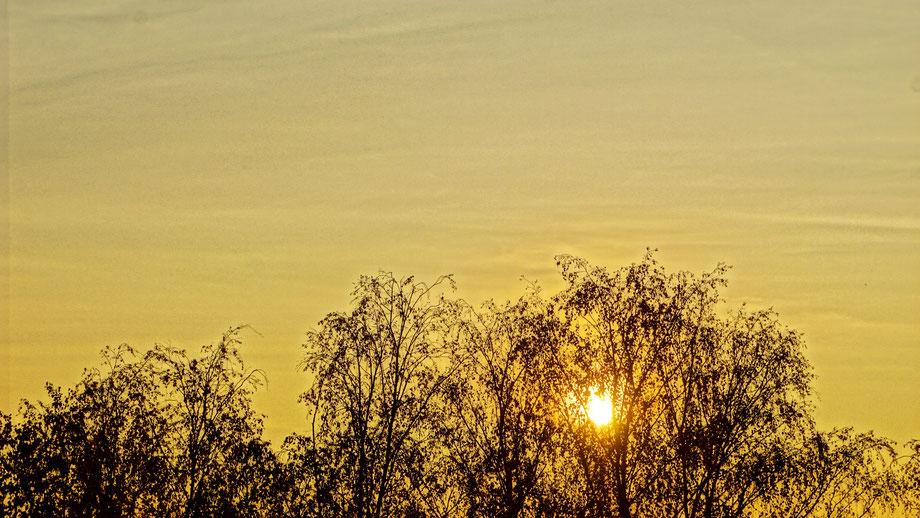 Clasen/Stiller Fotografie, Udo Clasen, Patrick Stiller, Nachtaufnahme, Abstrakte Fotos, Langzeitbelichtung, Sonnenaufgang, Abstrakte Fotografie, abstrakte lichter, HDR, Düsseldorf, Duisburg, abstraktes, Kunst, Fotokunst, farbenspiel, Berlin Umgebung,