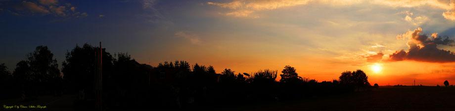 Panorama, Clasen/Stiller Fotografie, Udo Clasen, Patrick Stiller, Nachtaufnahme, Langzeitbelichtung, Sonnenaufgang, Sonnenuntergang, rot, grün, blau, orange, gold, gelb, Pflanzen, Baum, Bäume, HDR, Düsseldorf, Duisburg, Natur, Tiere, Wolken, Wassertropfen