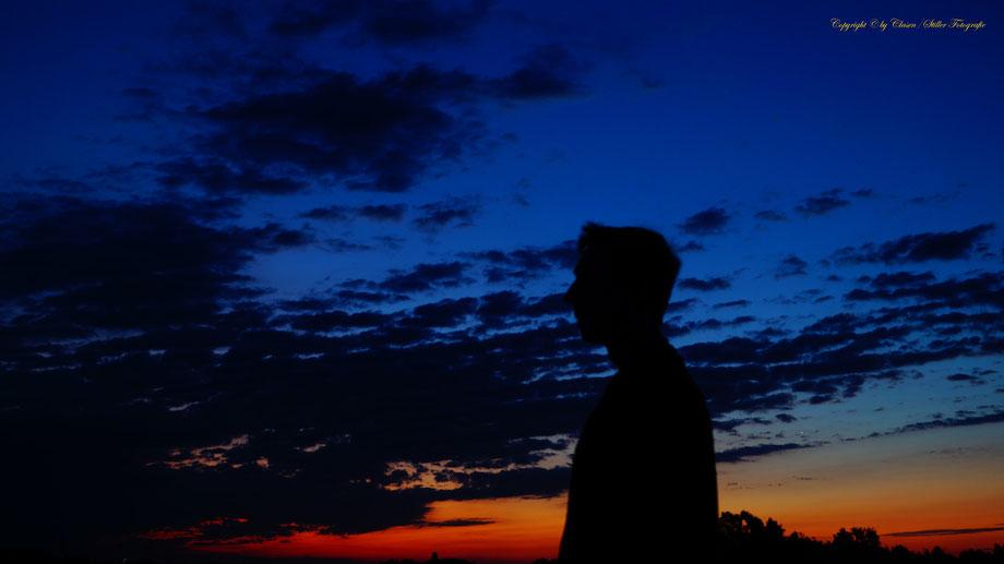 Silhouette bei Sonnenaufgang, Vögel, Clasen/Stiller Fotografie, Udo Clasen, Patrick Stiller, Nachtaufnahme, Langzeitbelichtung, Sonnenaufgang, Sonnenuntergang, rot, grün, blau, orange, gold, gelb, Pflanzen, Baum, Bäume, HDR, Düsseldorf, Duisburg, Natur, T