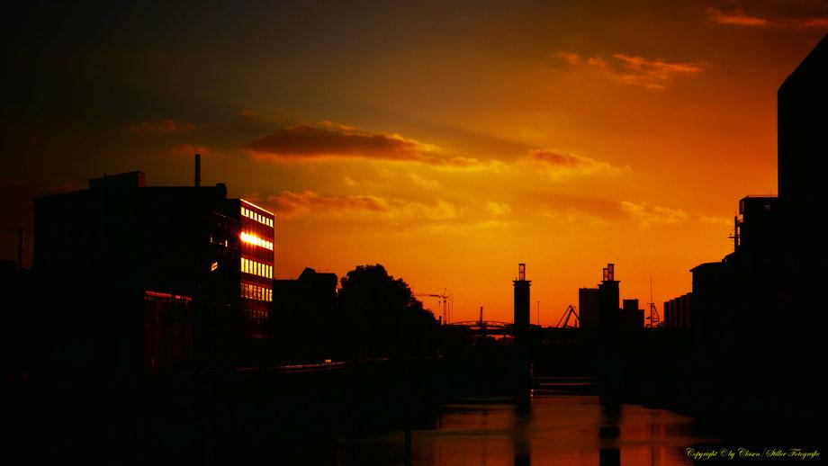 Innenhafen Duisburg, Clasen/Stiller Fotografie, Udo Clasen, Patrick Stiller, Nachtaufnahme, Langzeitbelichtung, Sonnenaufgang, Sonnenuntergang, grün, blau, orange, gold, gelb, Pflanzen, Baum, Bäume, HDR, Düsseldorf, Duisburg,