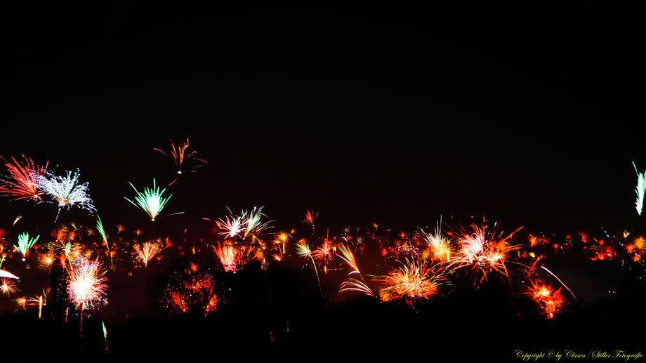 Nachtaufnahme, Langzeitbelichtung, Baum, Sonnenaufgang, Feuerwerk,