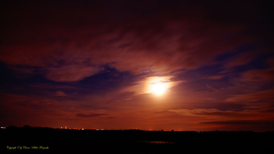 Nachtaufnahme, Langzeitbelichtung, Baum, Sonnenaufgang,