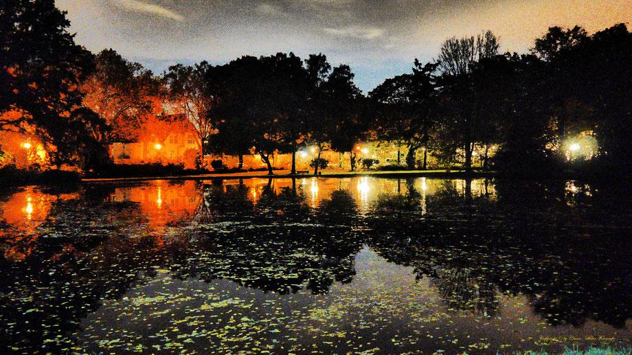 Nachtaufnahme, Langzeitbelichtung, Herbst, Benrath,