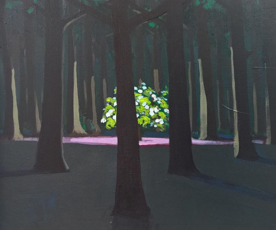 sapling - Acryl auf Leinwand, 50x60cm, 2016 | verkauft
