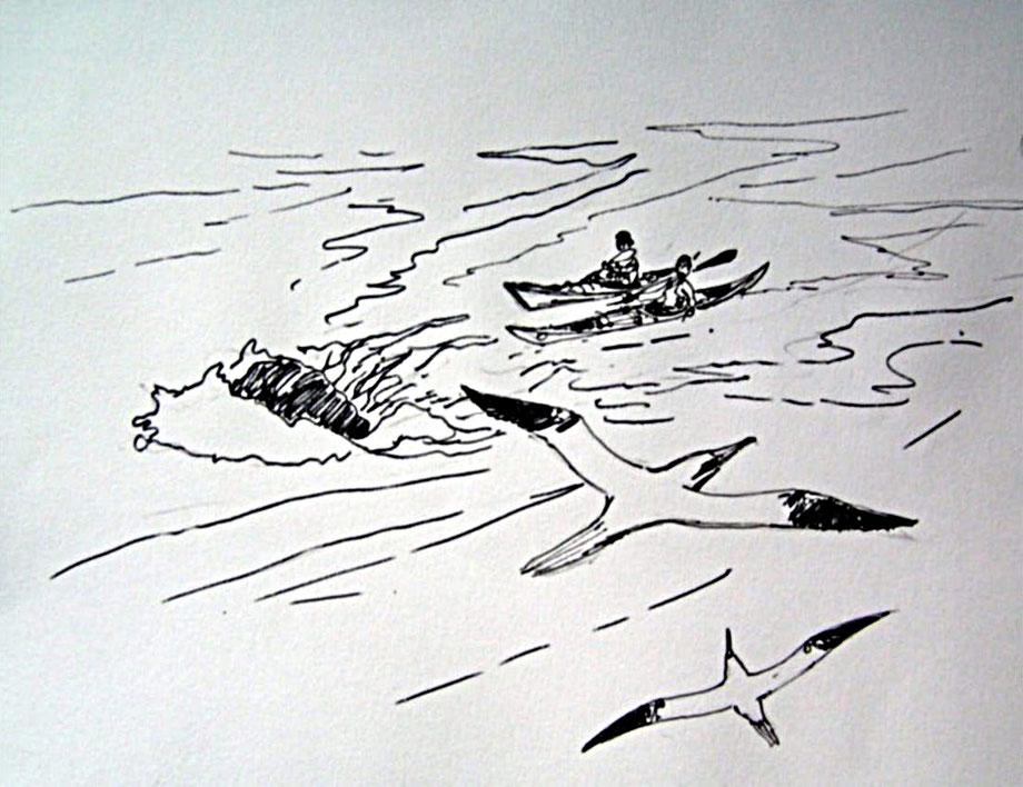 dessin de Philippe Bret