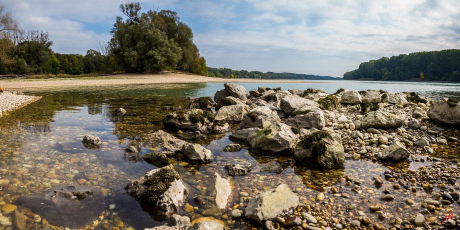 Donau bei Orth, Niedrigwasser