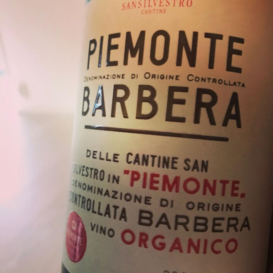 Nice Organic Barbera from Italy, Sansilvestro Cantine
