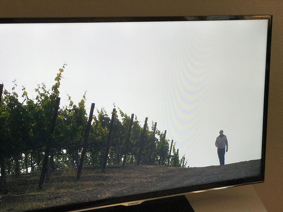 Netflix movie - Decanted. Not the most thrilling documentary on Napa Valley Winemaking