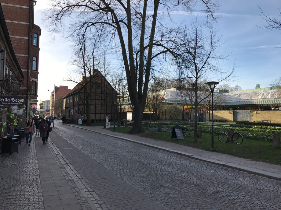 Crisp spring air in Skåne