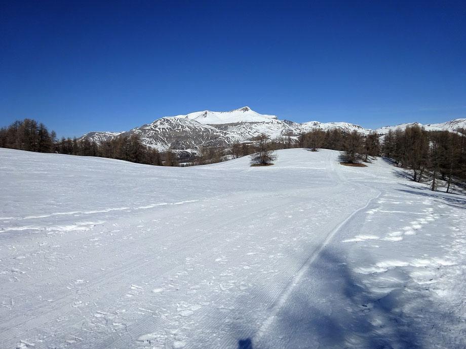 Le Mont Mounier en face avec ses 2 817 m