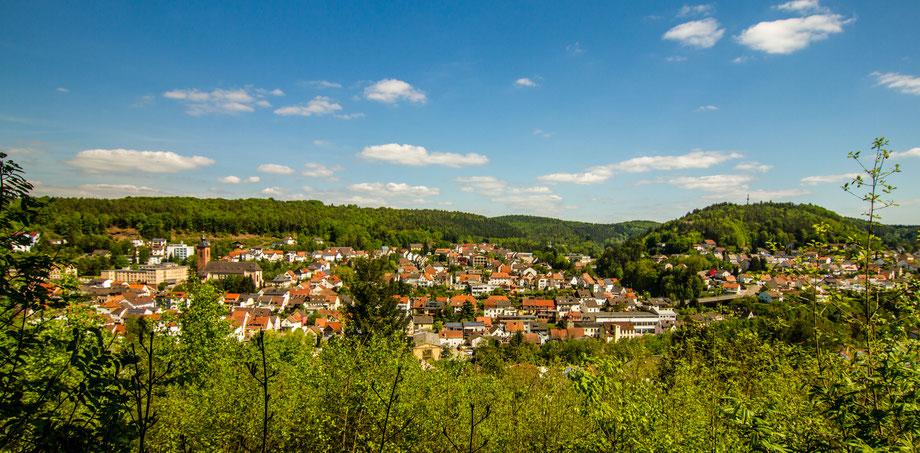 Tolle Aussichten vom Rodalber Felsenwanderweg - Bild (c) emil-pfalzauge.de