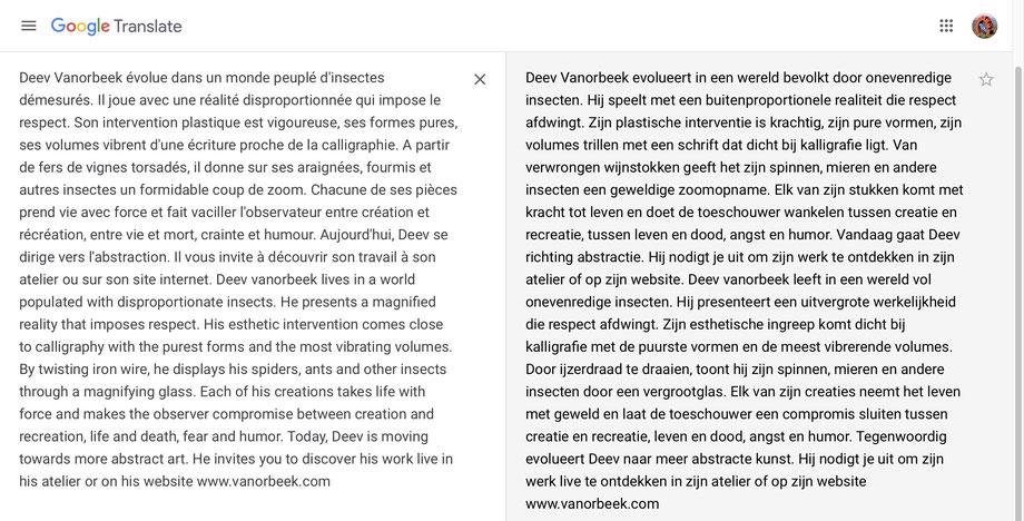 tekst vanorbeek sculptures d insectes
