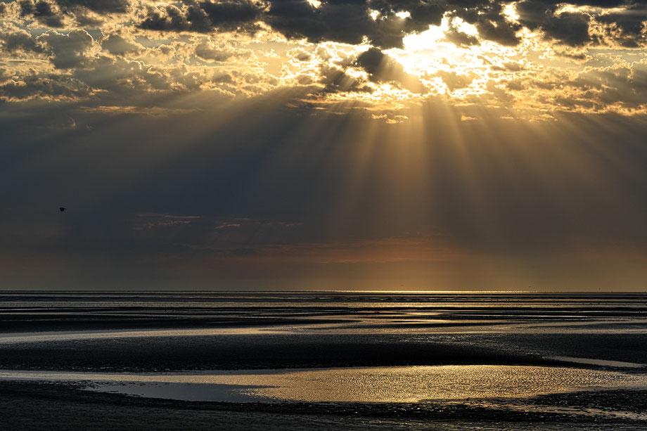 Mathieu Guillochon, photographe, couleurs, rivages, Manche, marée basse, France, Cotentin, Ste Marie du Mont, réserve naturelle de Beauguillot estuaire de la Vire, ciel, nuages estran, rivages, rayonnement
