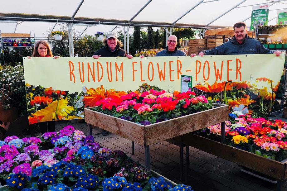 Rundum Flower-Power wird auch die Dekoration, da sind sich die Verantwortlichen der Musikvereinigung und von Wershofen Gartenbau einig.