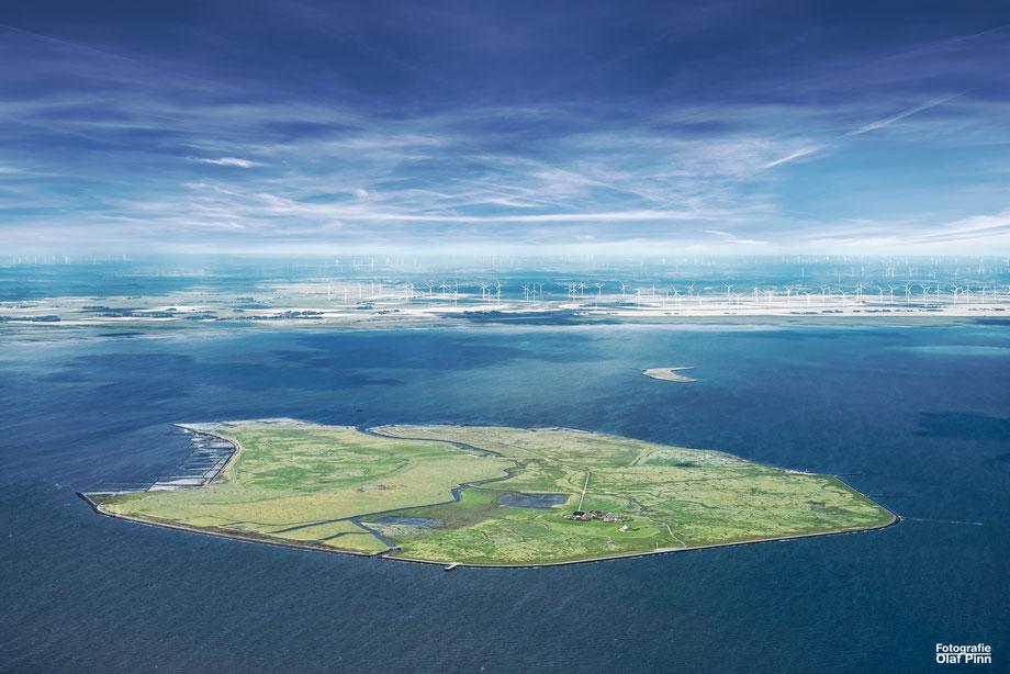 Unesco Weltnaturerbe Wattenmeer / OlafPinn Fotografie