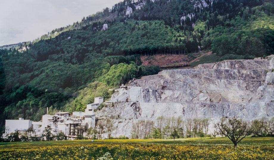 Kalkfabrik vom Buchholz aus im Jahre 1998