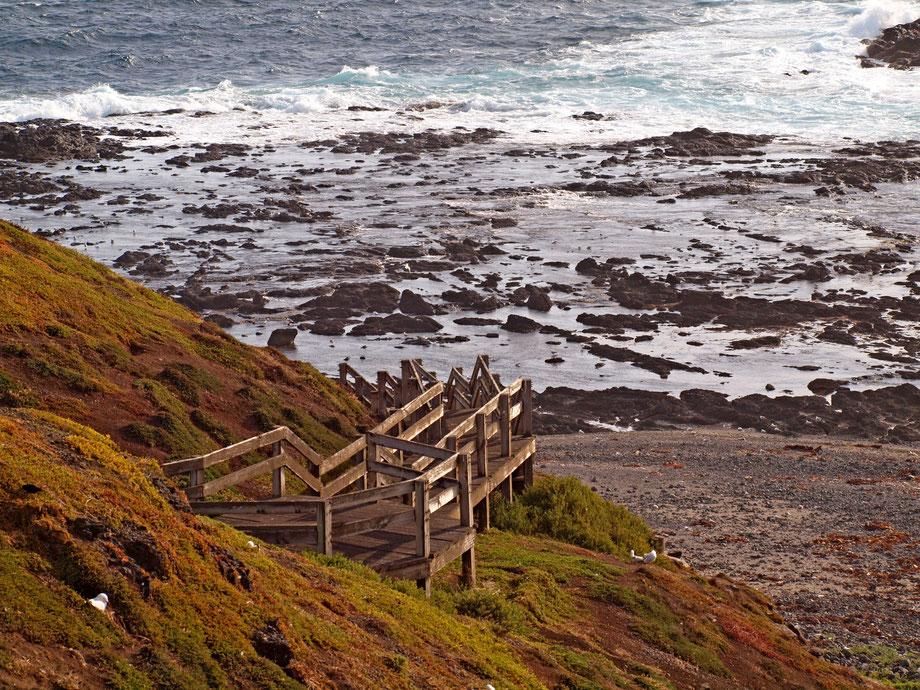 Pacific Ocean II, Phillip Island, December 2015