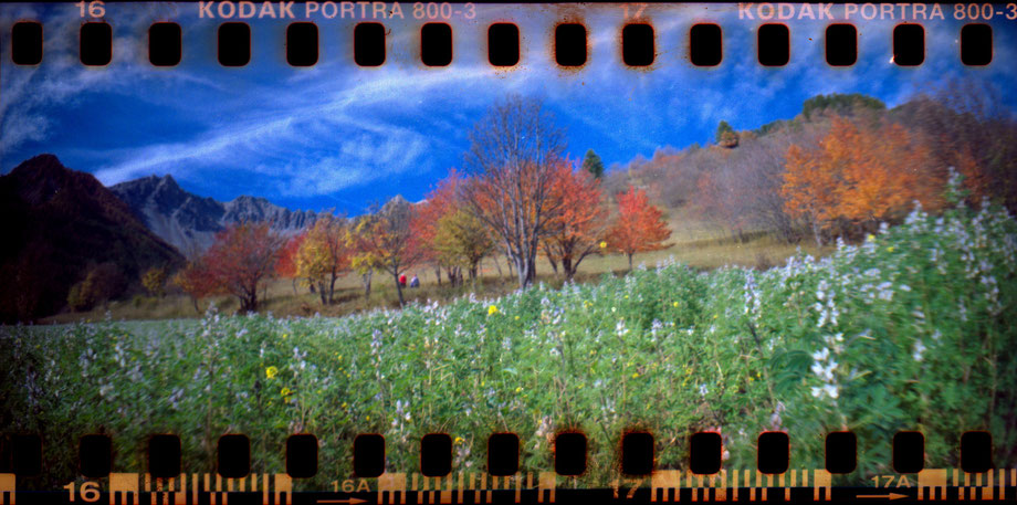 AUTUMN IN THE ALPS 2014 IV