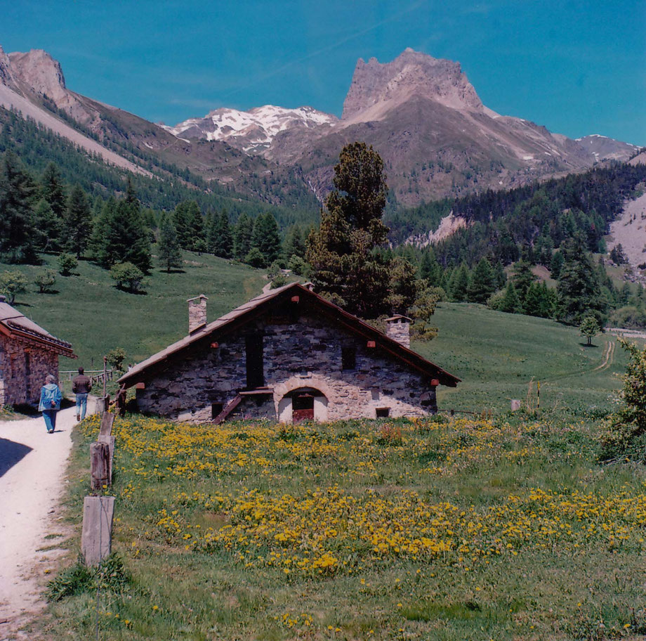 Verso il Thabor. Valle Stretta, Bardonecchia. (With Zeiss Ikon Nettar camera and Kodak 120 film)