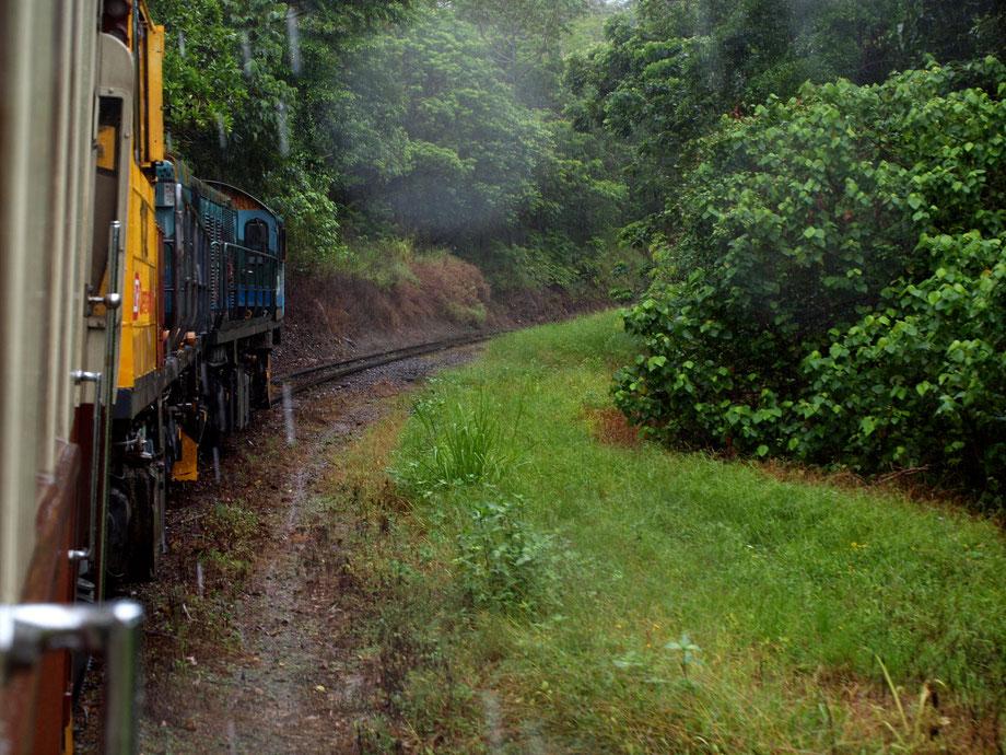 Kuranda Railway, Cairns, Tropical Australian Forest